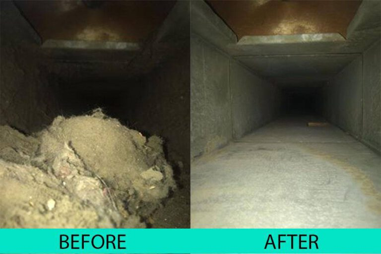 pure-air-care-before-after-3
